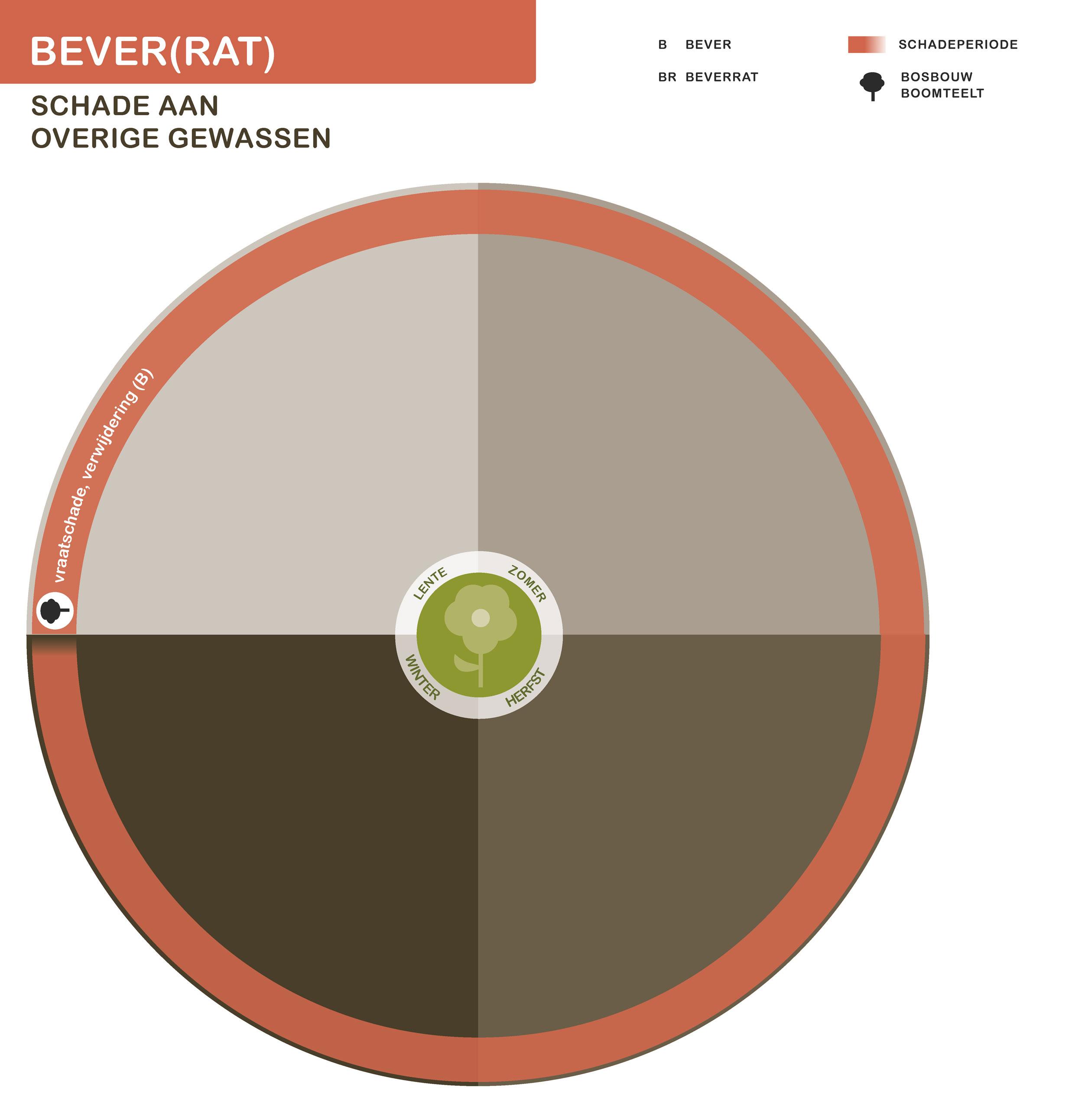 FPK-infogr-bever-overig-1