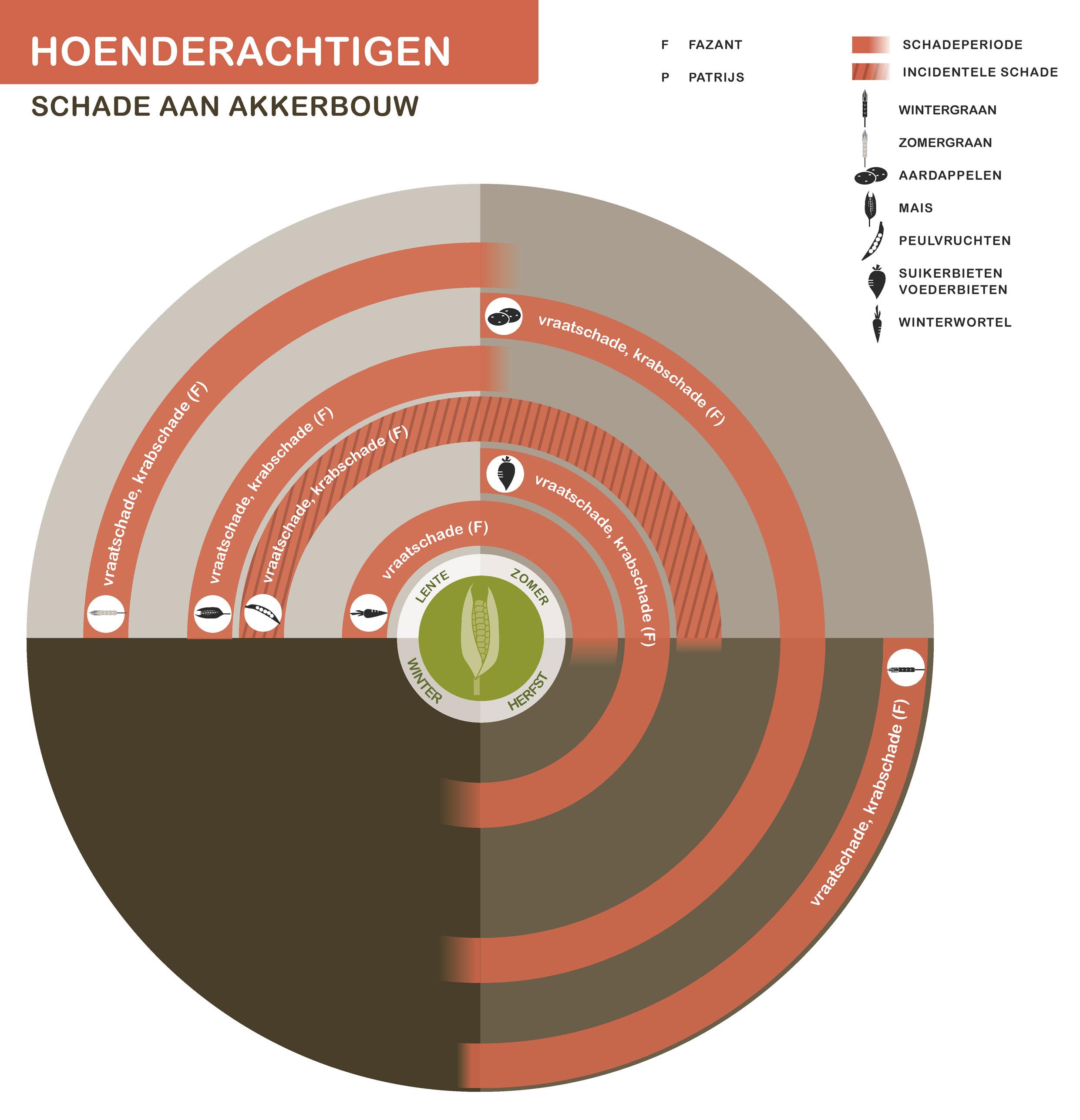 FPK-infogr-hoenderachtigen-akkerbouw-1