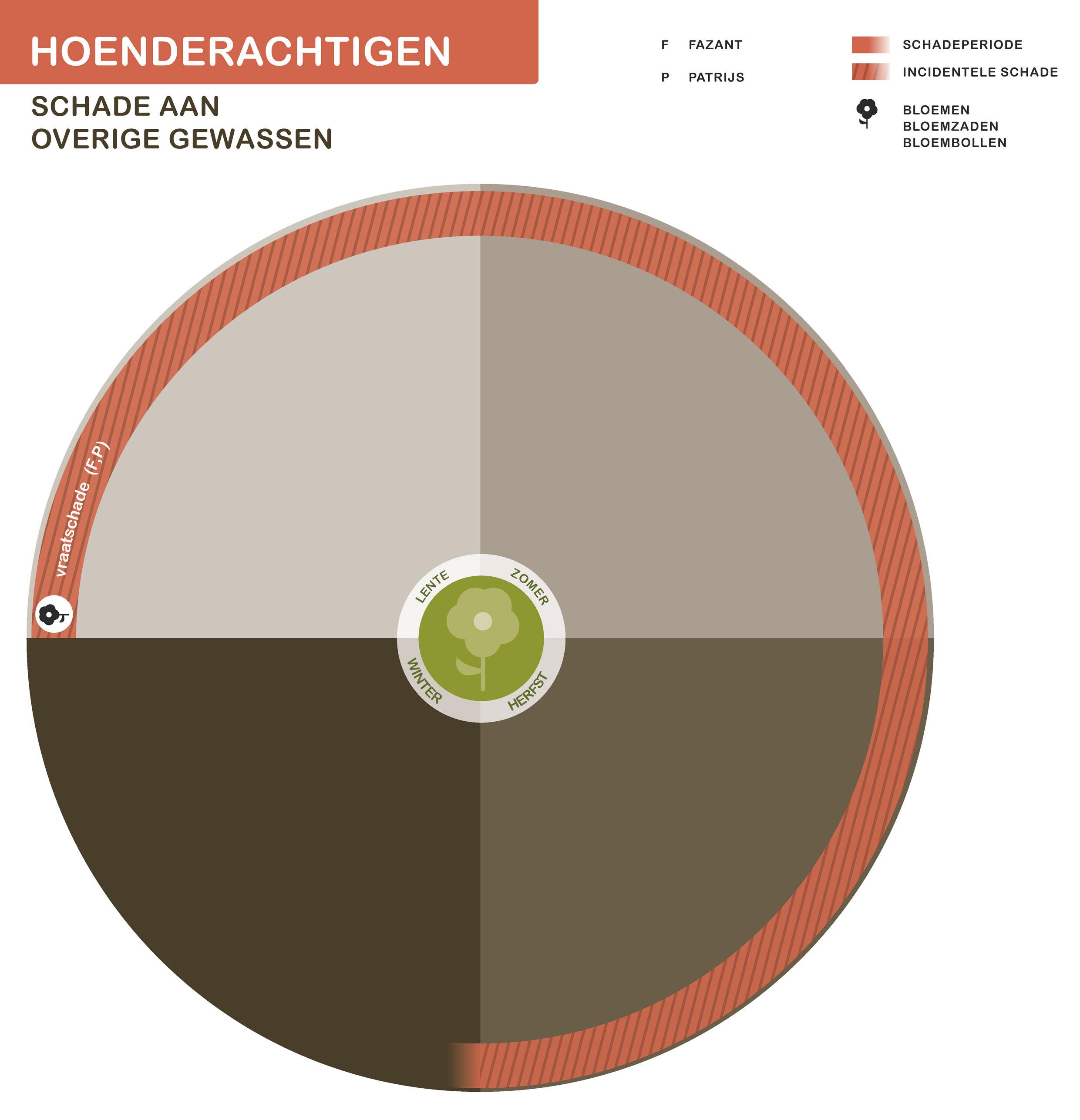 FPK-infogr-hoenderachtigen-overig-1