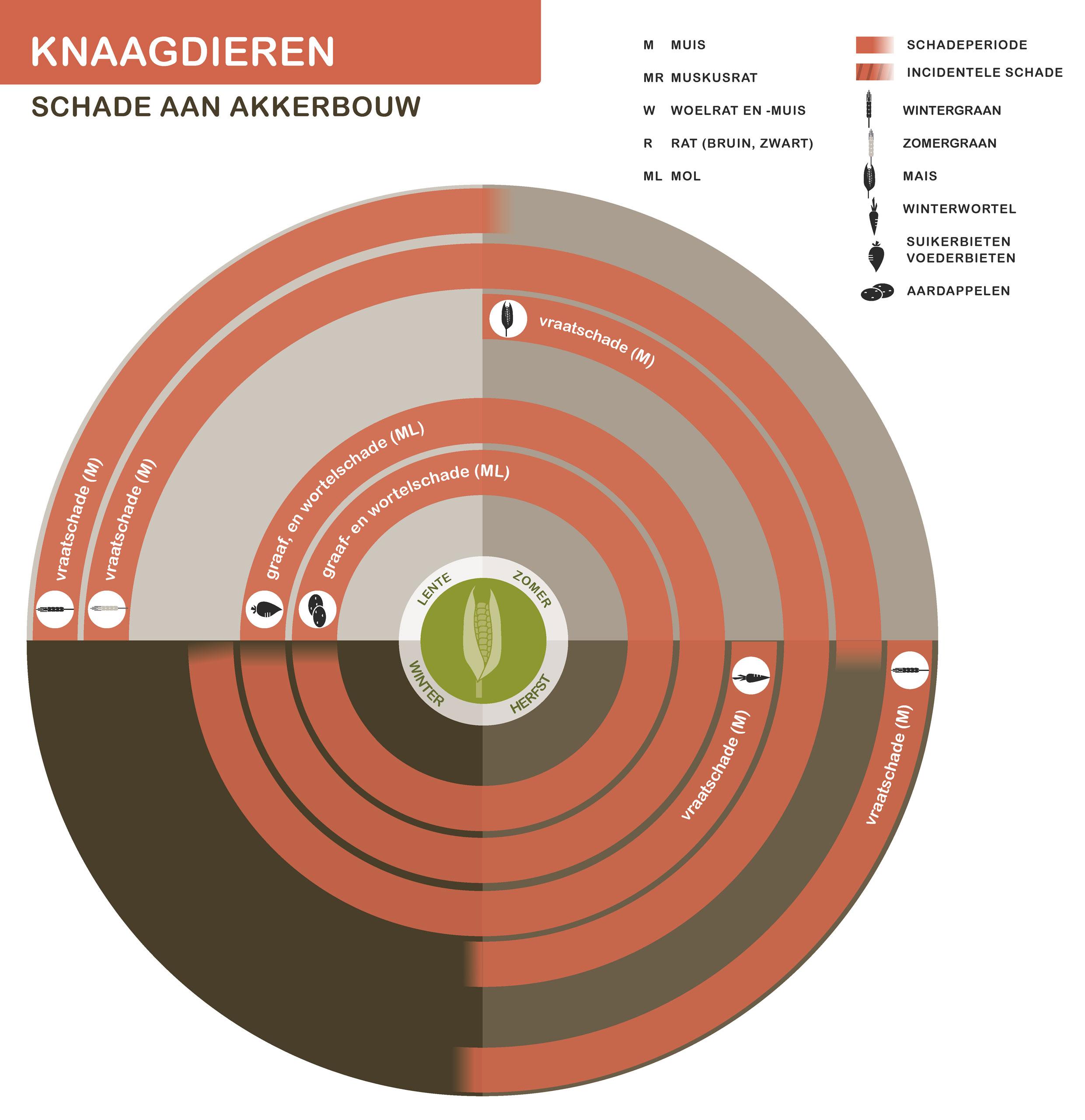 FPK-infogr-knaagd-akkerbouw-1