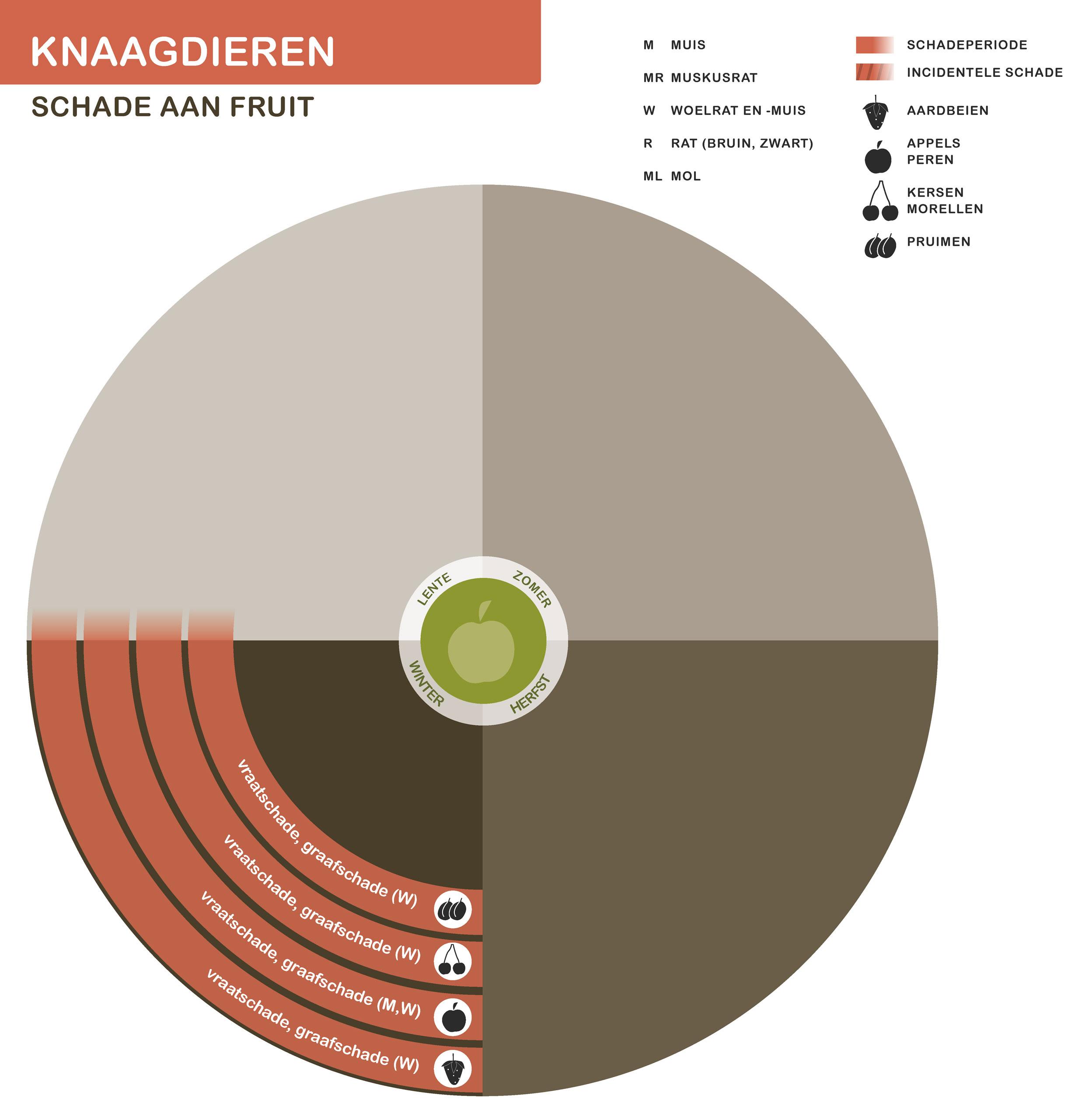 FPK-infogr-knaagd-fruit-1
