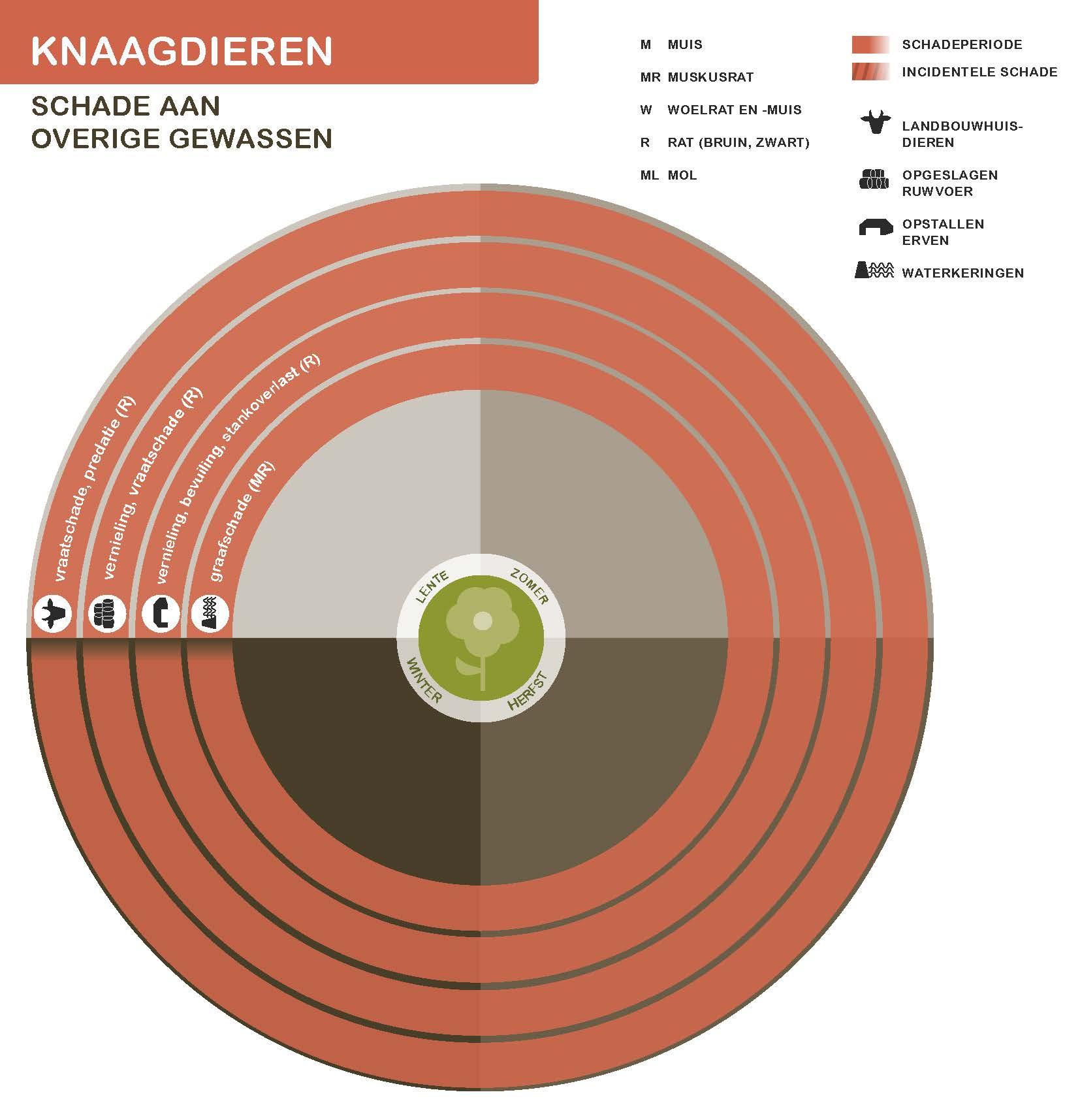 FPK-infogr-knaagd-overig-3