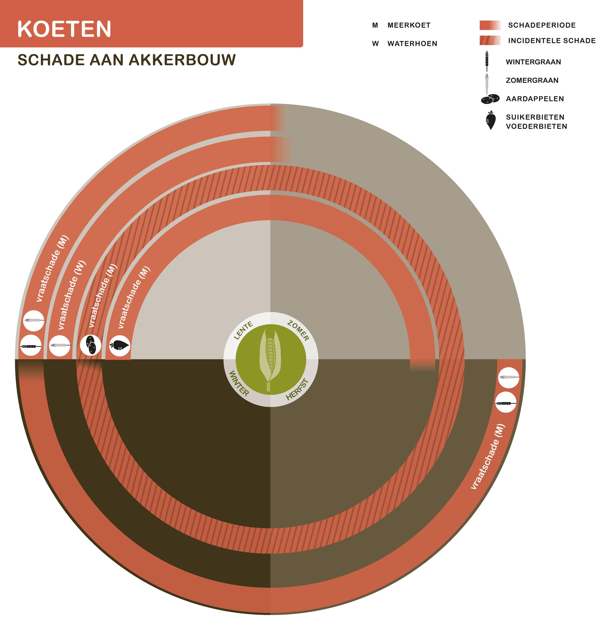 FPK-infogr-koeten-akkerbouw-1