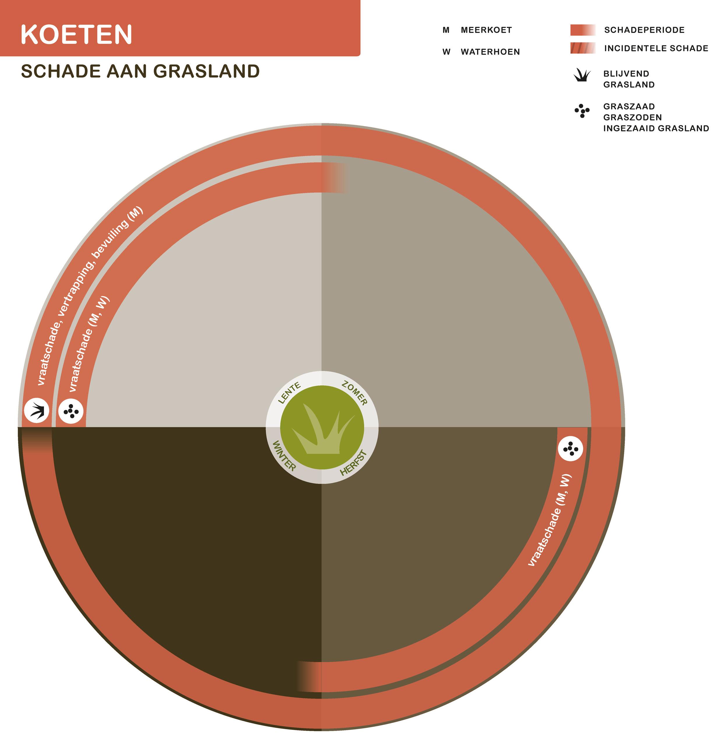 FPK-infogr-koeten-grasland-1