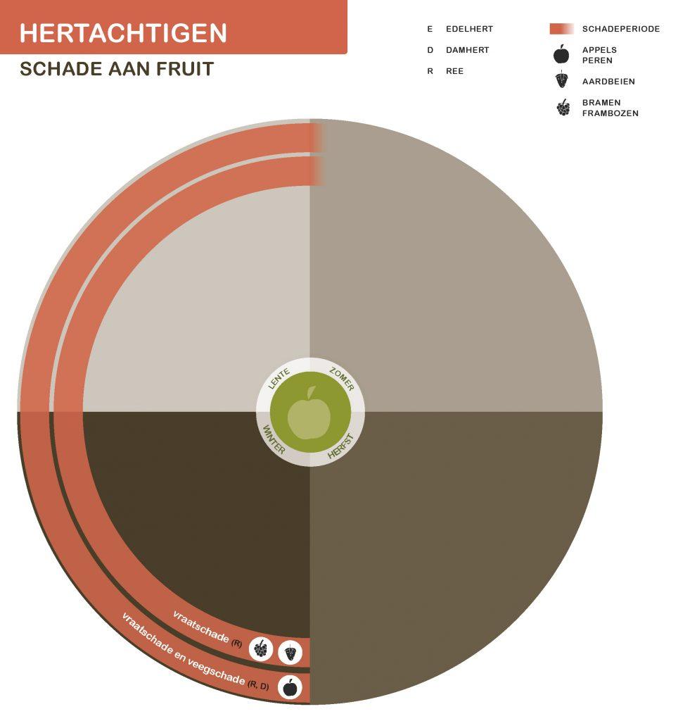 Hertachtigen-fruit-21-7-2016_Page_3-991x1024