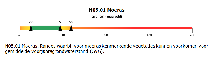 Index-N05.01-Moeras-Structuur