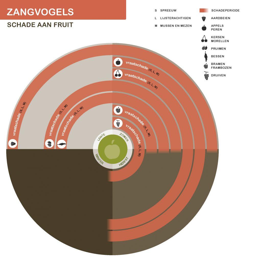 KleineZangvogels-NwSeizoen-Fruit-21-7-2016_Page_2-991x1024