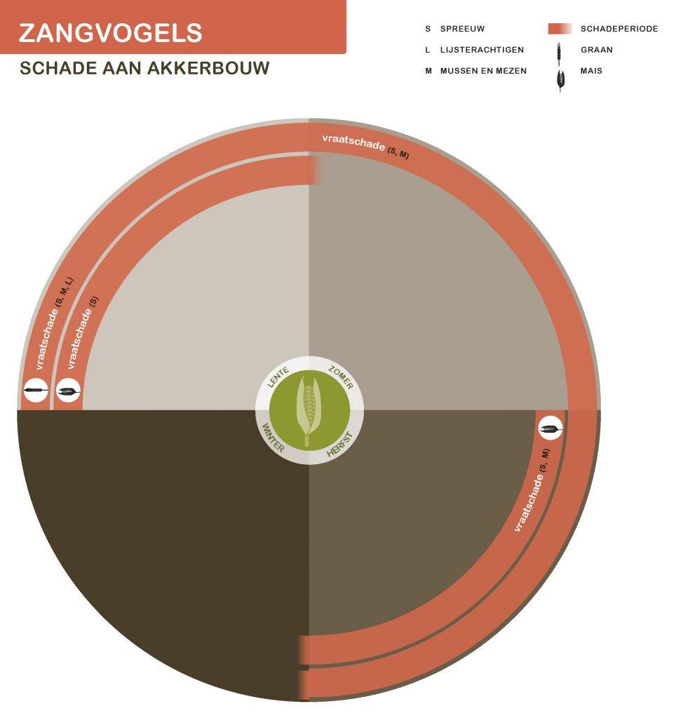 KleineZangvogels-NwSeizoen-akkerbouw-21-7-2016_Page_1-991x1024