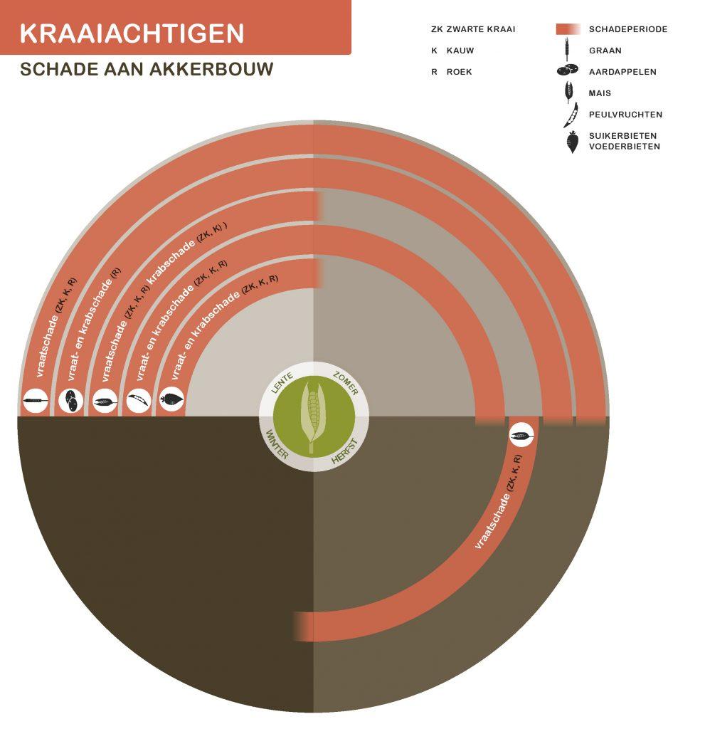 KraaiachtigenNwSeizoen-akkerbouw-21-7-2016_Page_1-991x1024
