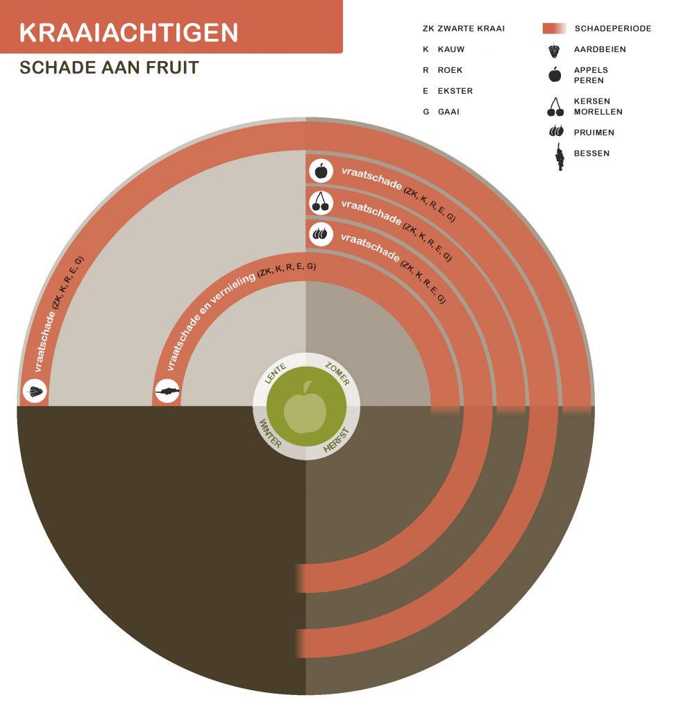 KraaiachtigenNwSeizoen-fruit-21-7-2016_Page_3-991x1024