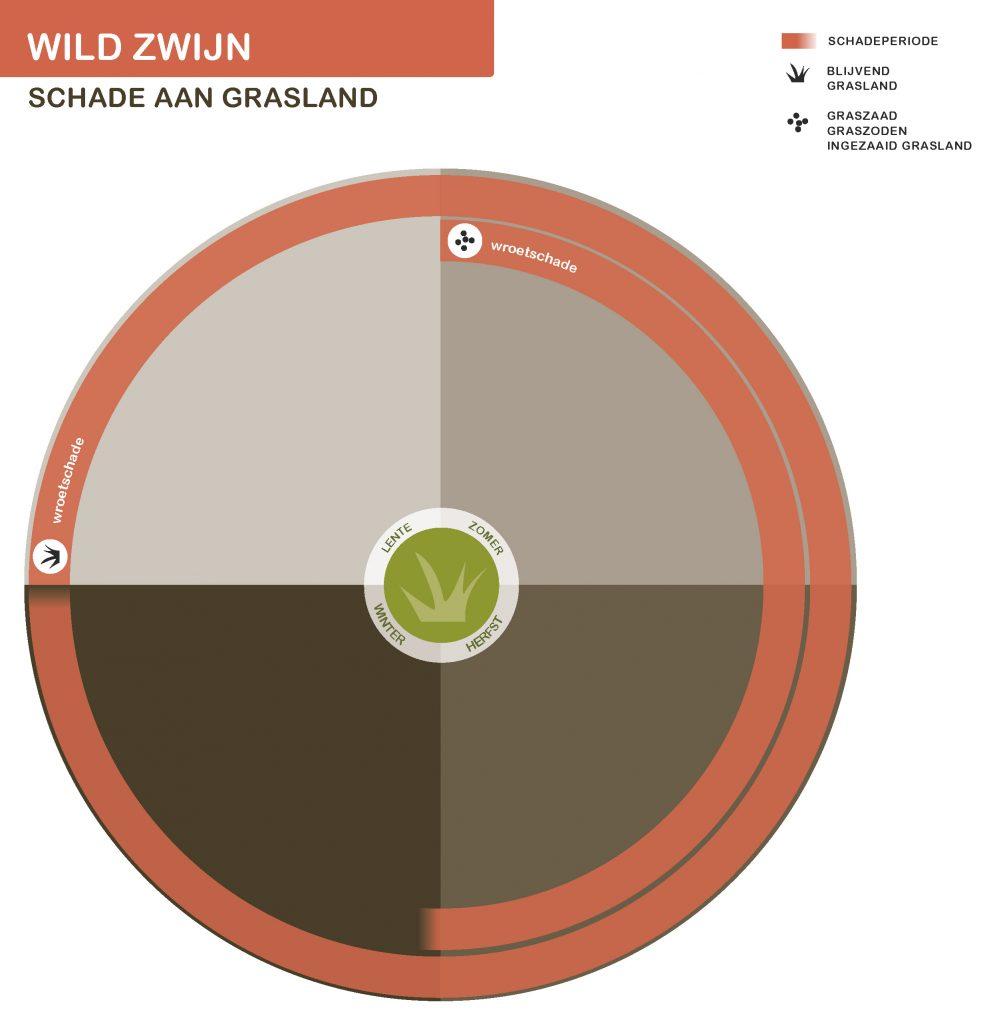 WildZwijnNwSeizoen-grasland-21-7-2016_Page_2-991x1024