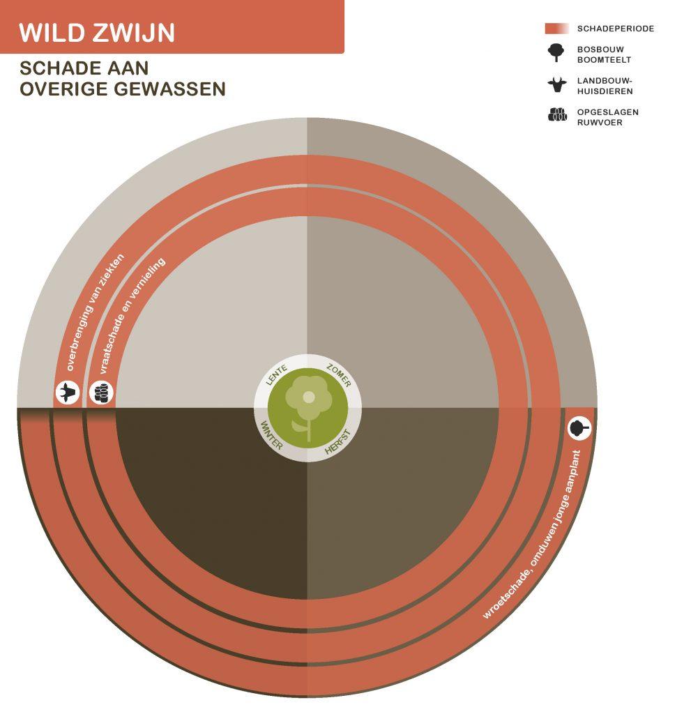 WildZwijnNwSeizoen-overige-21-7-2016_Page_5-991x1024