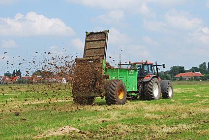 Sfeerafbeelding voor Bemesten met ruige stalmest (6)