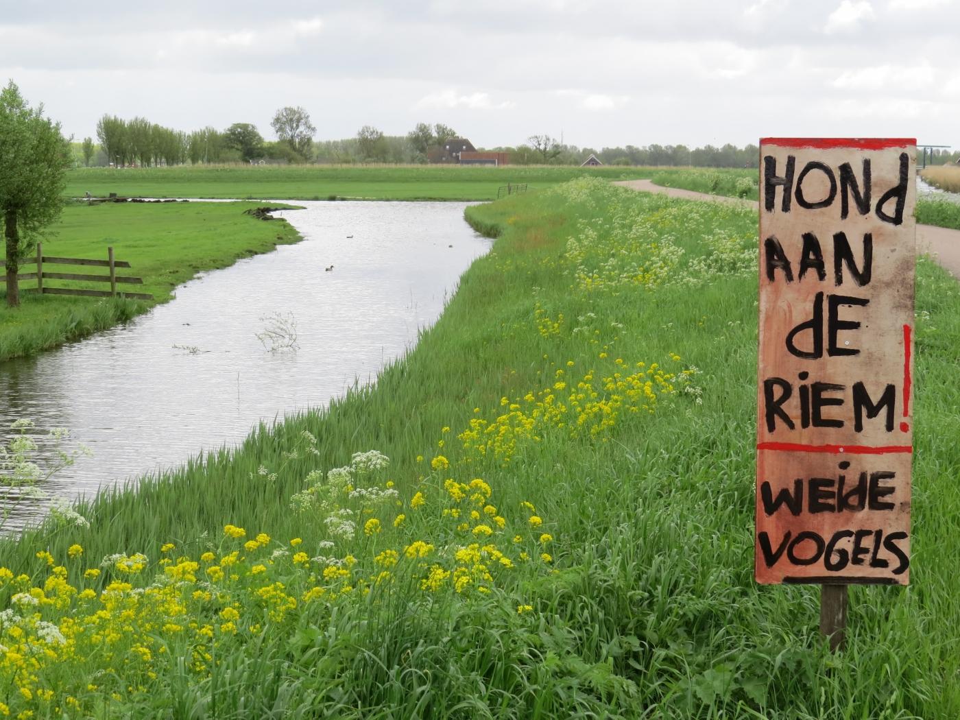 Sfeerafbeelding voor W01 Waterbeheergebieden (categorie water)
