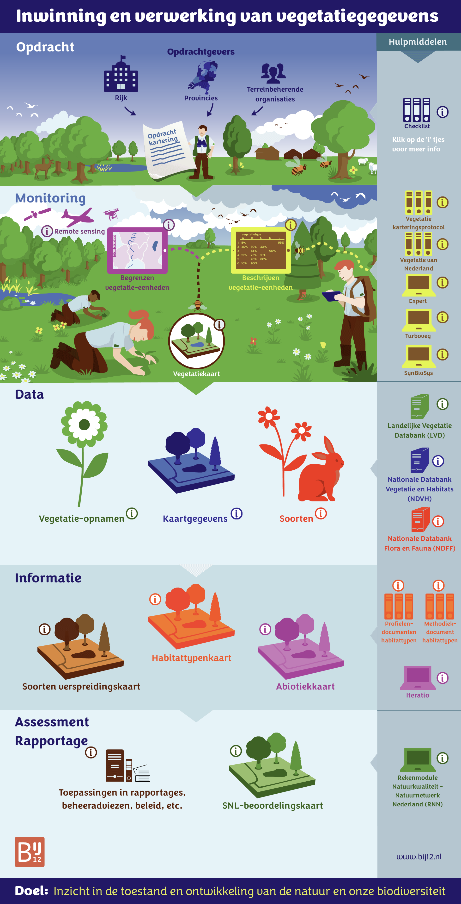 Screenshot van de infographic vegetatieproces