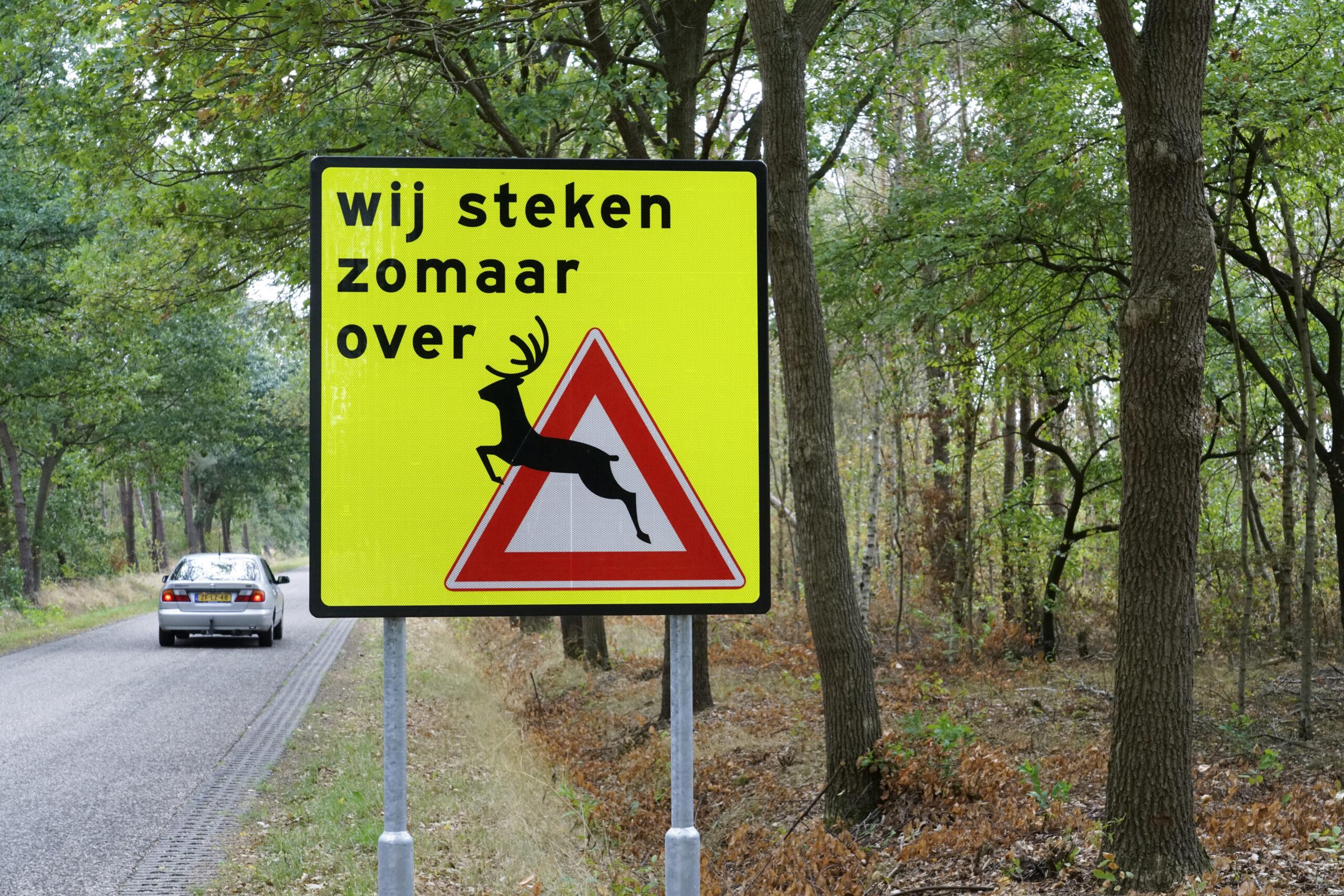 Waarschuwingsbord overstekend wild in de gemeente Rijssen-Holten