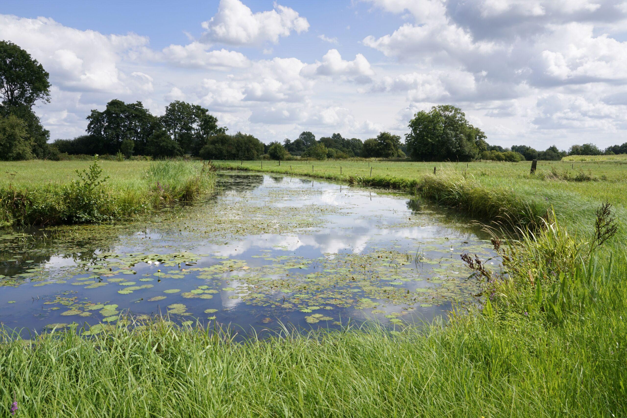 Op de foto is water (een grensrivier) te zien in de gemeente Meppel en Staphorst