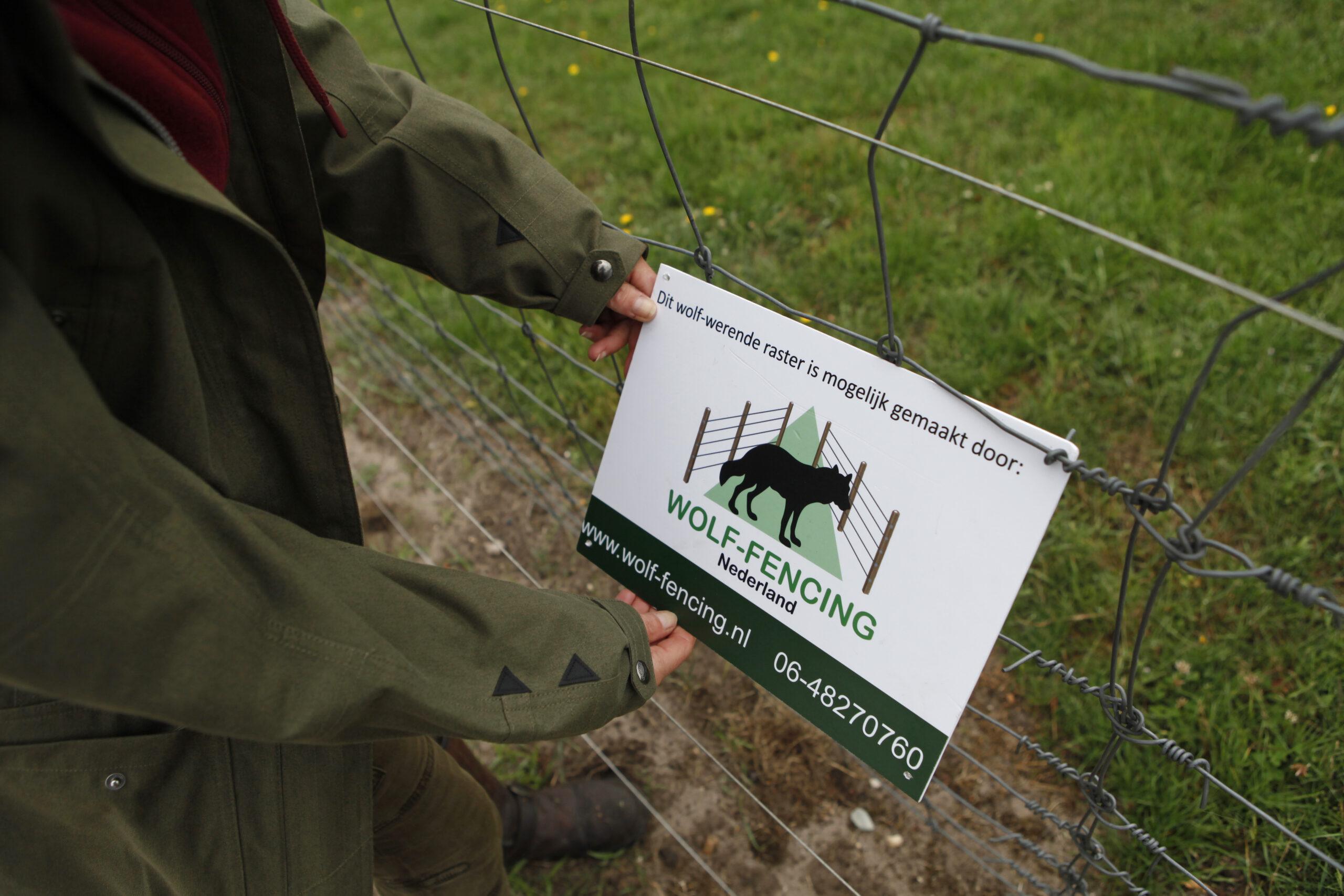 Afbeelding horend bij: Tegemoetkomingsregeling schade door wolf verlengd
